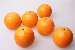 Апельсины искусственные  8см (6 шт)