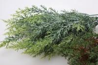 аспарагус зелень в ассортименте букет 30см