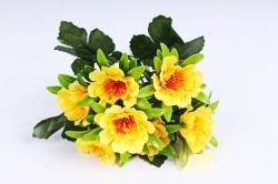 Азалия  жёлтая