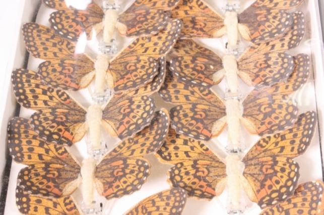 бабочки деревянные 8 см на прищепке (12 шт в уп) (в ассортименте)