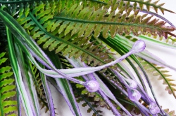 Бубенчики с папоротником фиолетовые