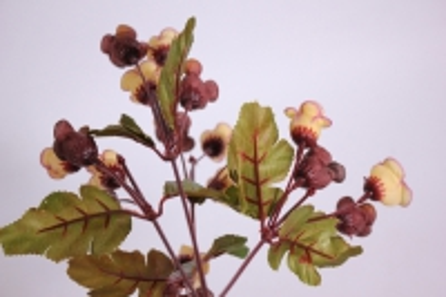 букет цветов роза 30см - бежевая kwy567 2488