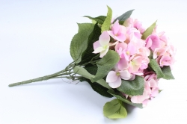 Букет Гортензии  5 веток розово-салатовый SUN567