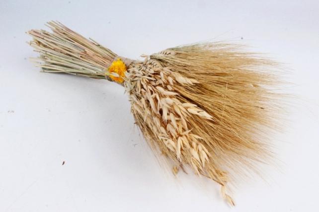 Букет из сухих колосовых культур (овес, пшеница),  550 гр. (М) 0842