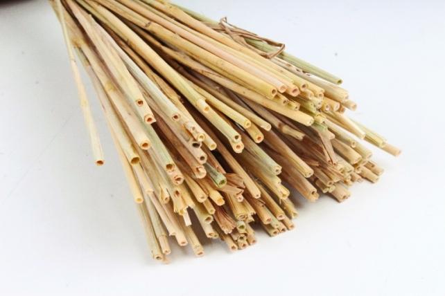 Букет из сухих колосовых культур (пшеница, чумиза),  405 гр. (М) 0873