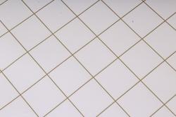 Бумага Глянец (И) Клетка на белом 70*100см 78г/м2 (10шт в уп) В125