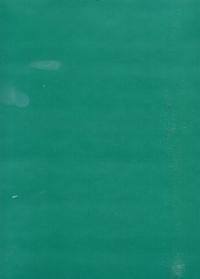 Бумага подарочная ГЛЯНЕЦ Однотонная Зеленая 0,7х1м в листе (10 листов)