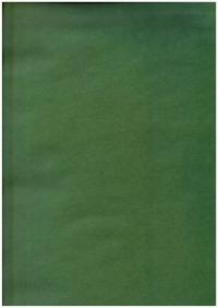 """Бумага подарочная КРАФТ """"Однотонный лесной зеленый"""" 0,7 х 1м в листе (10 листов)"""