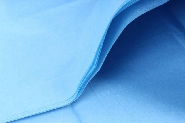 Бумага тишью 51*66см  Голубая в листах 17гр 10 листов  292  PTQ292 (М)
