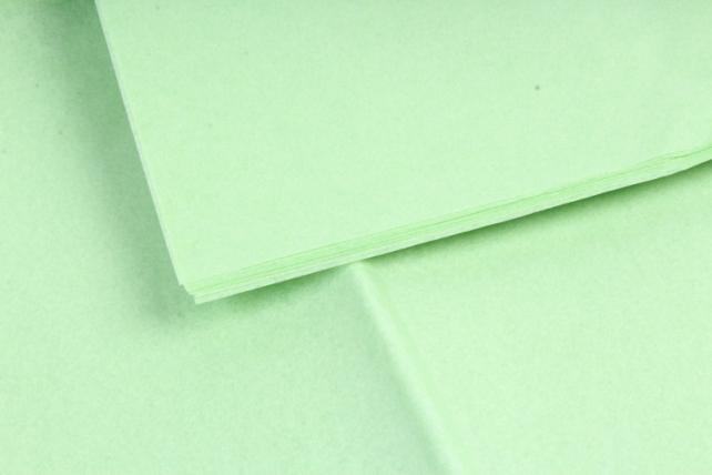 Бумага тишью 51*66см  Светло Зеленая в листах 17гр 10 листов  4103  PTQ4103 (М)