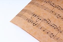 Бумага  КРАФТ 203/681 Мелодия 100*70см  (10 лист)
