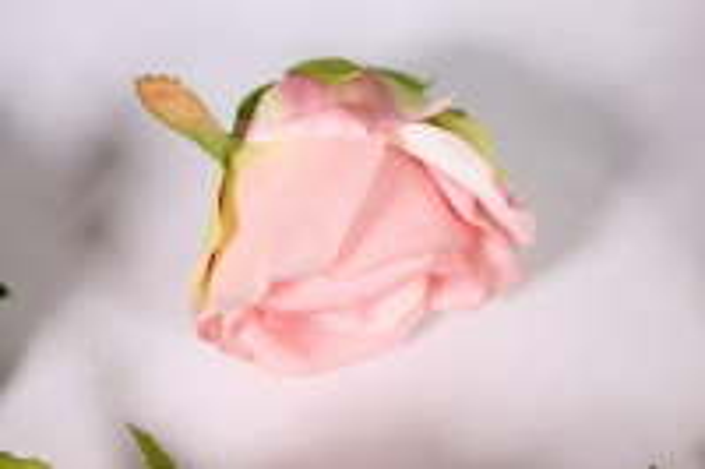 бутон розы розово - салатовый (в уп. 12 шт) d=9см mght