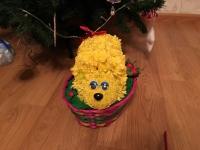 Цветик - Ёжик (игрушки из живых цветов)