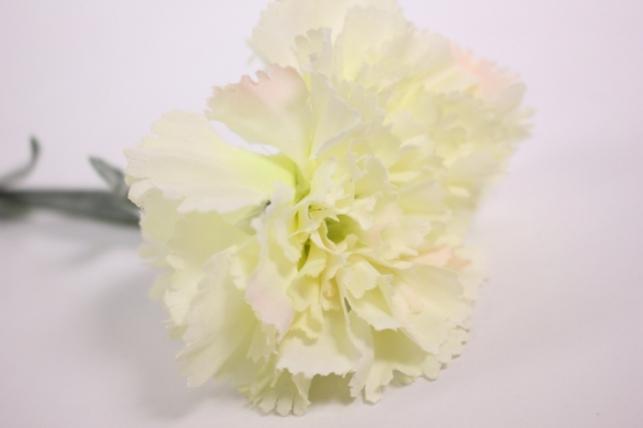цветок гвоздики 55см - шампань kwsj6а 8520
