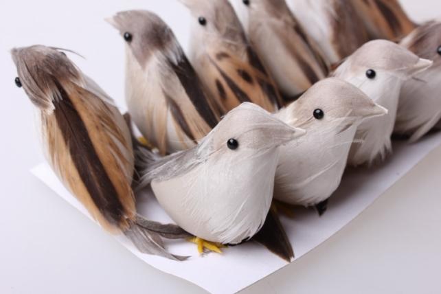 Декоративная искусственная флористическая - 0396 Птичка Яркая на стикере (12шт в уп)
