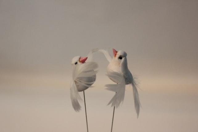 Декоративная искусственная флористическая - 2881 Птичка Голуби белые  3см (24шт в уп)