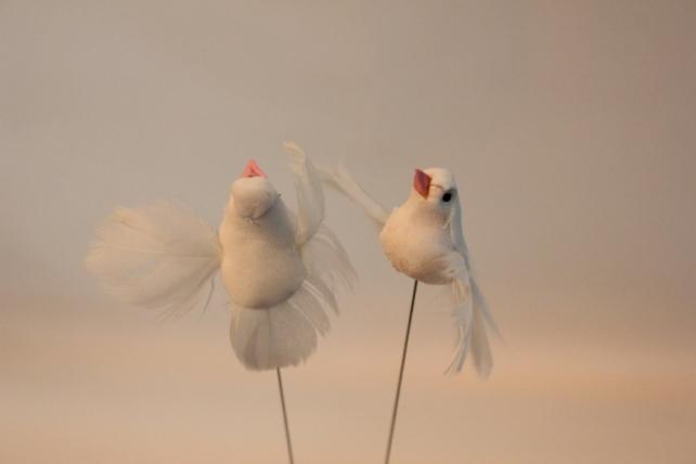бабочки и птички декоративная искусственная флористическая - 2881 птичка голуби белые  3см (24шт в уп) 7320