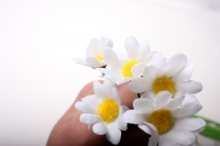 вставки декоративная вставка флористическая - 4056 цветочек на пике (12шт) 2505