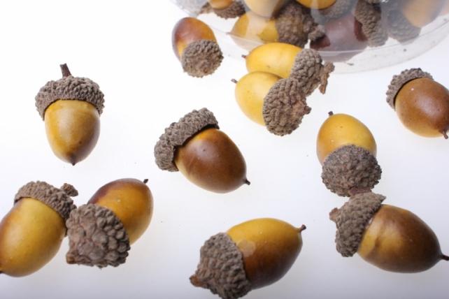 Декоративные Искусственные фрукты - Жёлуди в пластиковой коробке (96шт)