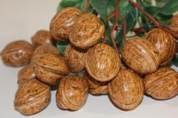Декоративные Искусственные фрукты - Грецкий орех