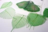 Декоративные Листья скелетизированные (100гр) микс - Салатовый