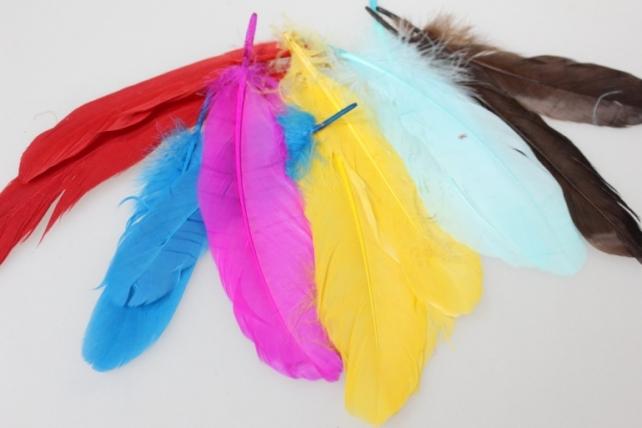 перья цветные в пакете (16 гр) декоративные перья цветные в пакете (16 гр) - красный 7560