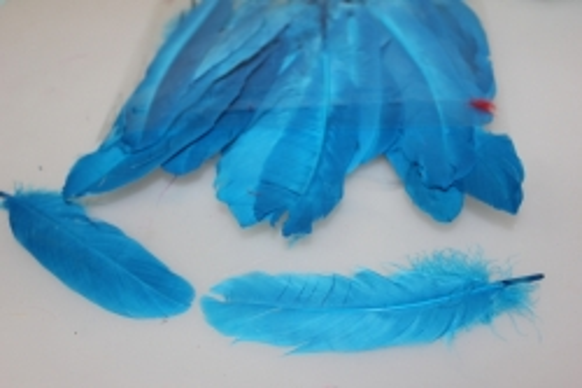 Декоративные перья цветные в пакете (16 гр) - Синий