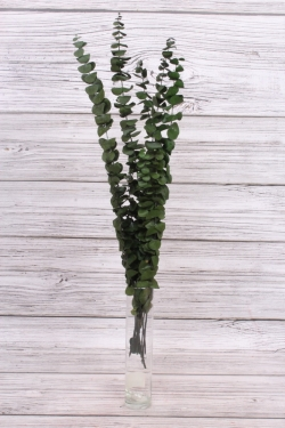 Эвкалипт (80гр), зеленый 8346Н