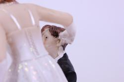 фигурки жених и невеста на торт (с приколом)- с кляпом