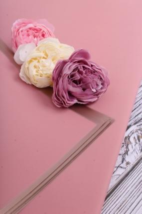 Флористическая пленка с золотой каймой, 58 см х 58 см, 20 листов/упак., чайная роза 4035М