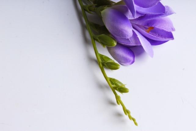 Фрезия 62 см (3 шт в уп) фиолетовая SUN328