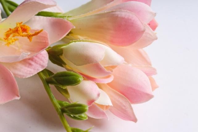 Фрезия 62 см (3 шт в уп) розовая SUN328