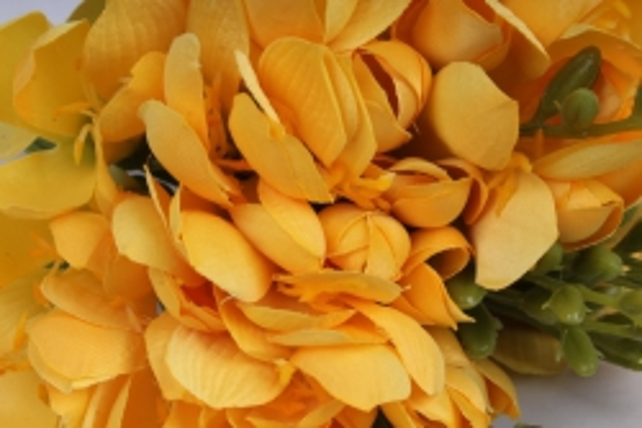 фрезия 62 см (12 шт в уп) жёлтая sun328