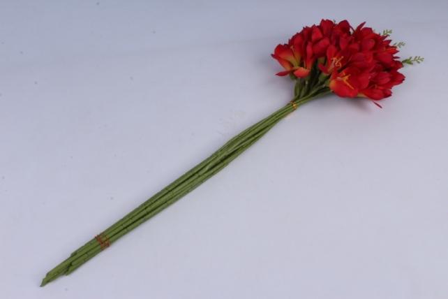 фрезия 62 см (12 шт в уп) красная sun328