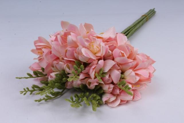 Фрезия  (12 шт в уп) розовая SUN328