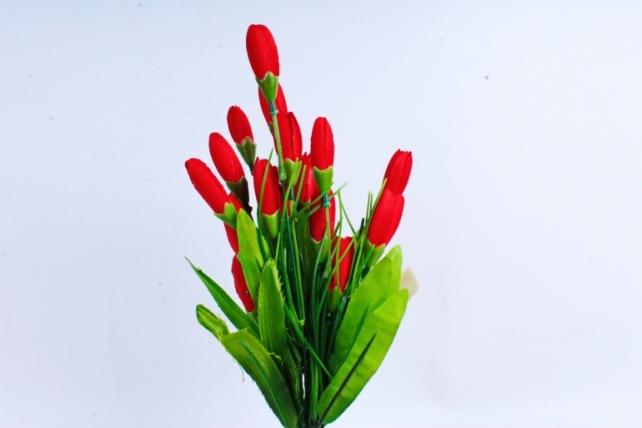 Галянтусы красные