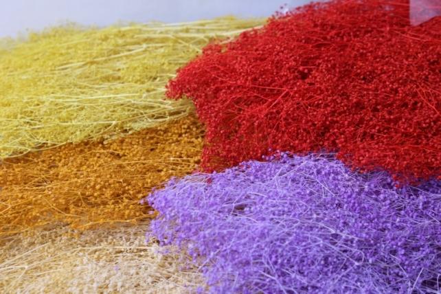 гипсофила гипсофила сухоцветы - красный 7697