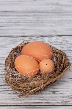 Гнездо с яйцами  836637