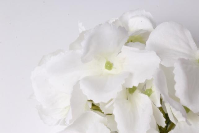 головка гортензии 15см белый  liu280