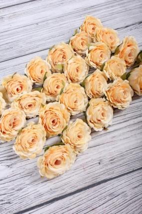 Головка Розы 5*6 см медовый (24 шт в уп) 9KL8771