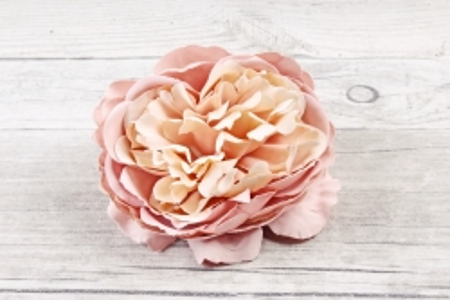 Головка розы Ретро Пудра 1шт  9KW7725
