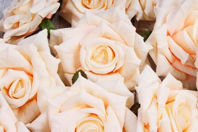 Головка Розы кремовый (12шт в уп) 8KL690KRE