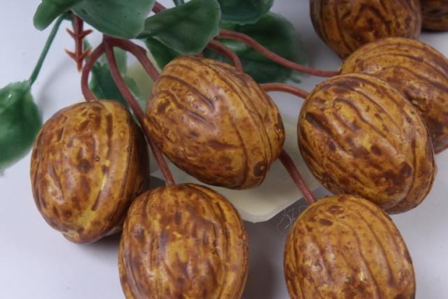 грецкий орех на ветке