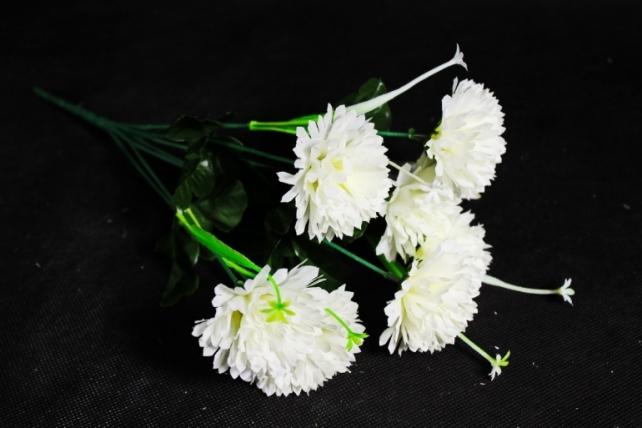 Гвоздики  белые
