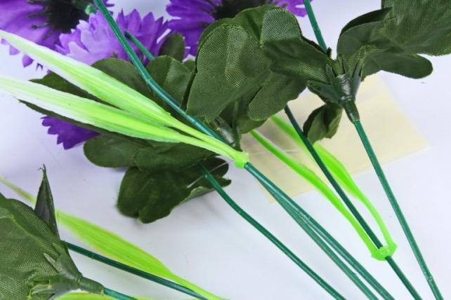 Гвоздики  фиолетовые