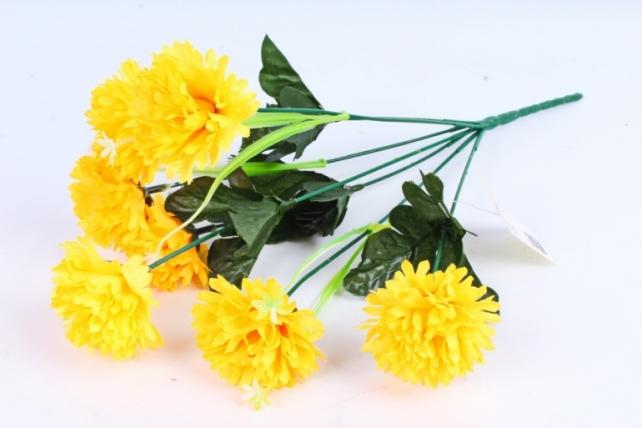 Гвоздики  жёлтые