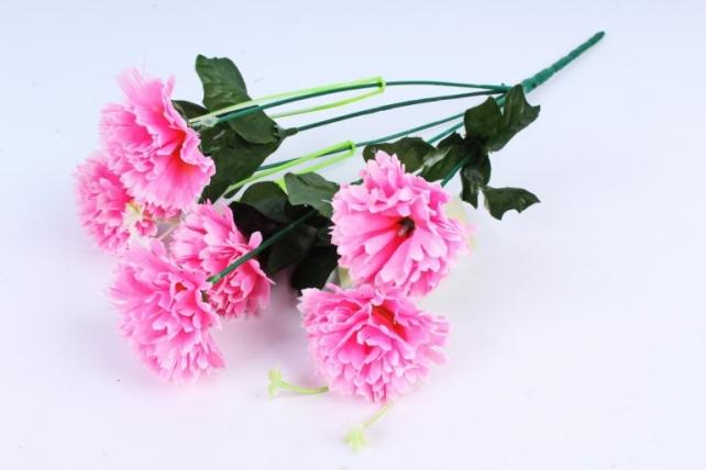 Гвоздики  розовые