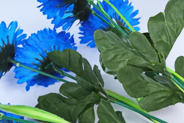 Гвоздики  синие