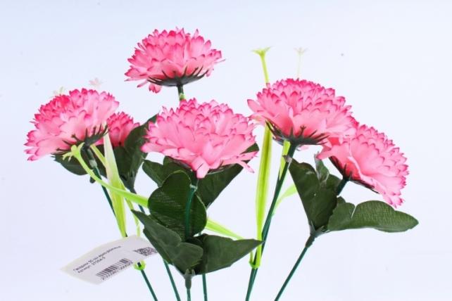 Гвоздики  ярко-розовые