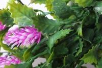 хмель букет малиновый 30см